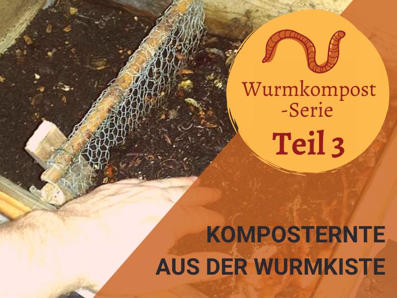 Wurmkompost-Serie Teil 3