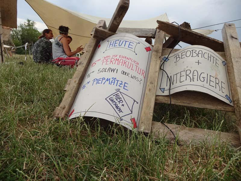 Ablaufplan für ein Permakultur-Picknick