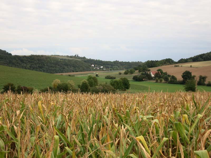 Landschaft in der Oberpfalz