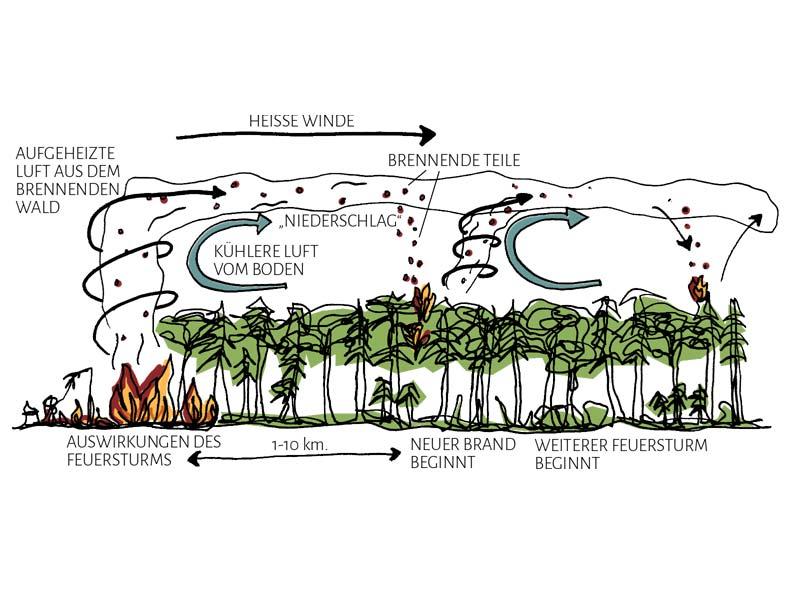 Feuerstürme – Flächenbrände können Feuertornados erzeugen, insbesondere auf Hügelkämmen. Sie verbreiten brennende Teile in Windrichtung über viele Kilometer.