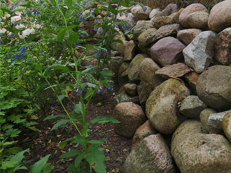 Aus runden Feldsteinen, locker gelegte Trockenmauer als Begrenzung