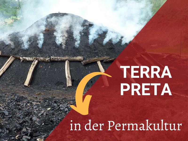 Kohlenmeiler in Netphen-Walpersdorf: Herstellung von Terra Preta (Creative Commons: BY-SA Frank Behnsen)