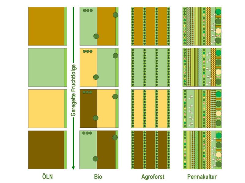 Unterschied in der Fruchtfolge bei Permakultur, Agroforst, Bio und ökologischer Leistungsnachweis (ÖLN)