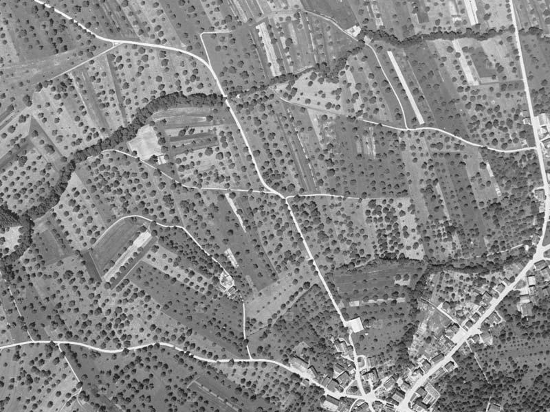 Gemeinde Roggwill, Kanton Thurgau, 1945. Landwirtschaft Luftbild