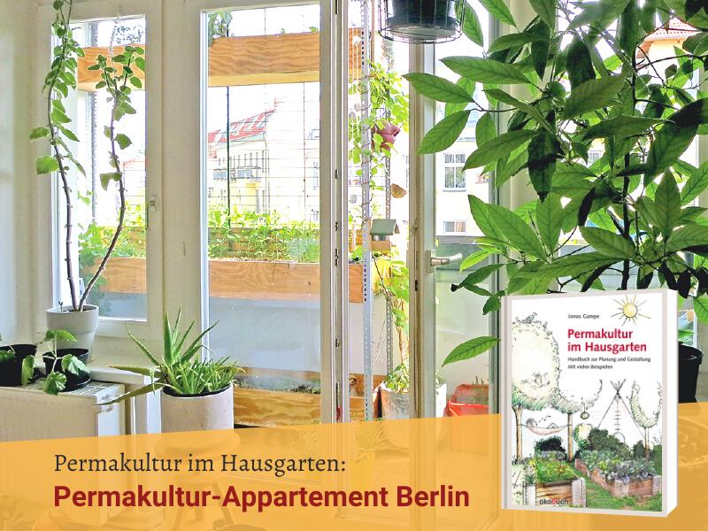 Gartenvorstellung: Permakultur-Appartement Berlin, Permakultur in Wohnung und Balkon