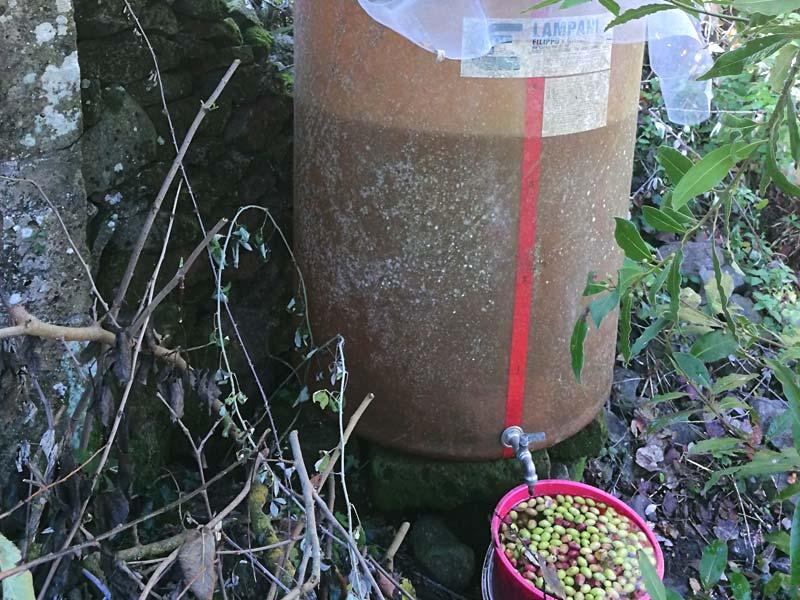 Trinkwasserbehälter aus Glasfaser direkt am Haus (Foto © Saviana Parodi)